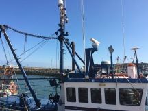 howth ships